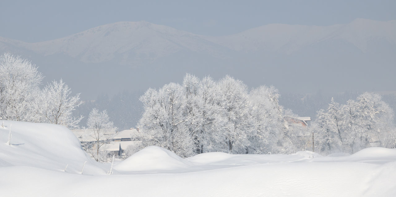 Awesome winter landscape. Trees covered with hoarfrost and snow in winter on mountains background. Bansko, Bulgaria Beauty In Nature Christmas Cold Temperature Day Frosty Frozen Landscape Mountain Mountain Range Nature No People Outdoors Outdor Panarama Scenics Season  Sky Snow Tranquil Scene Tranquility Tree Winter
