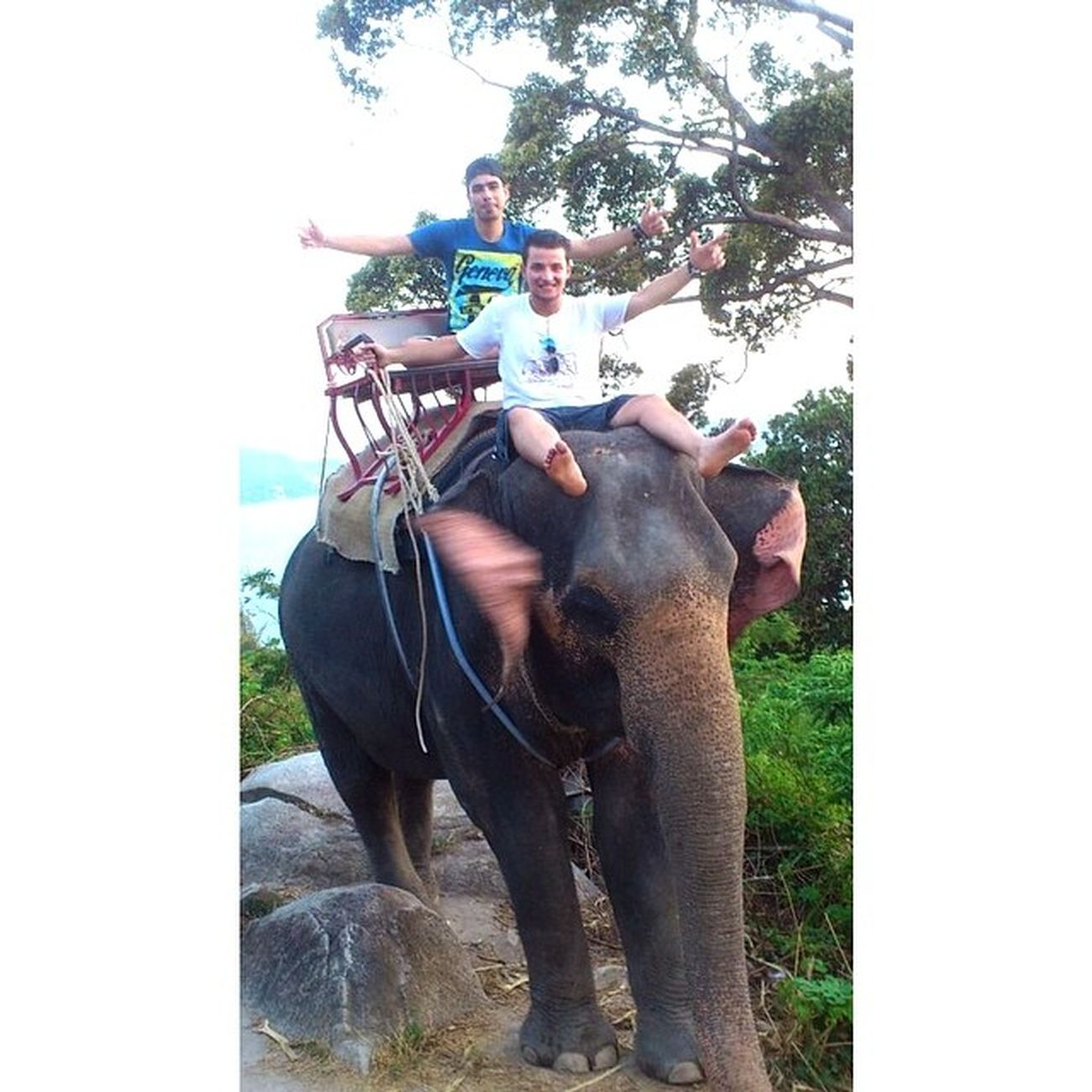 Funny Time Nice Travel On the Elephant with @mody_shaeri @osama_elgon ????✔️Thailand Thai Fantasea Phuket Elephant shots