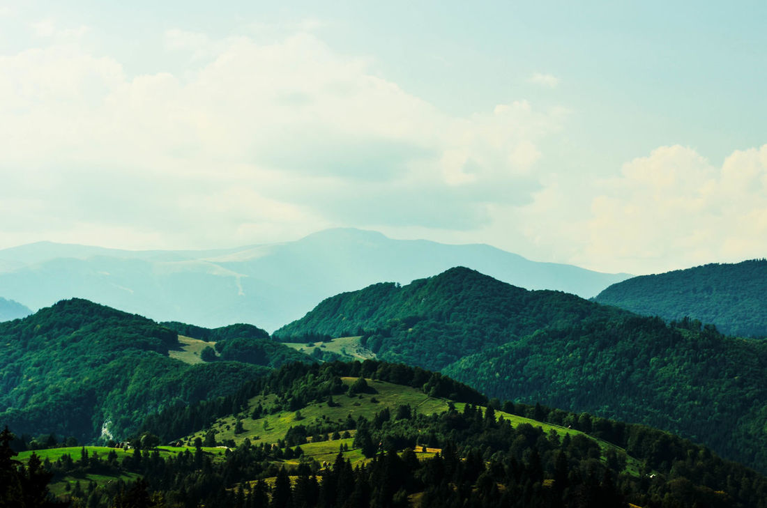 Carpathians Hicking Hills Landscape_Collection Nature Romania Skyline Beauty In Nature Day Landscape Mountain Mountain Range No People Outdoors Sky Tree