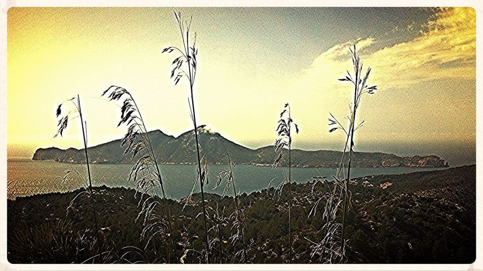La Dragonera. Illes Balears Senderismo Rutapiedraseca