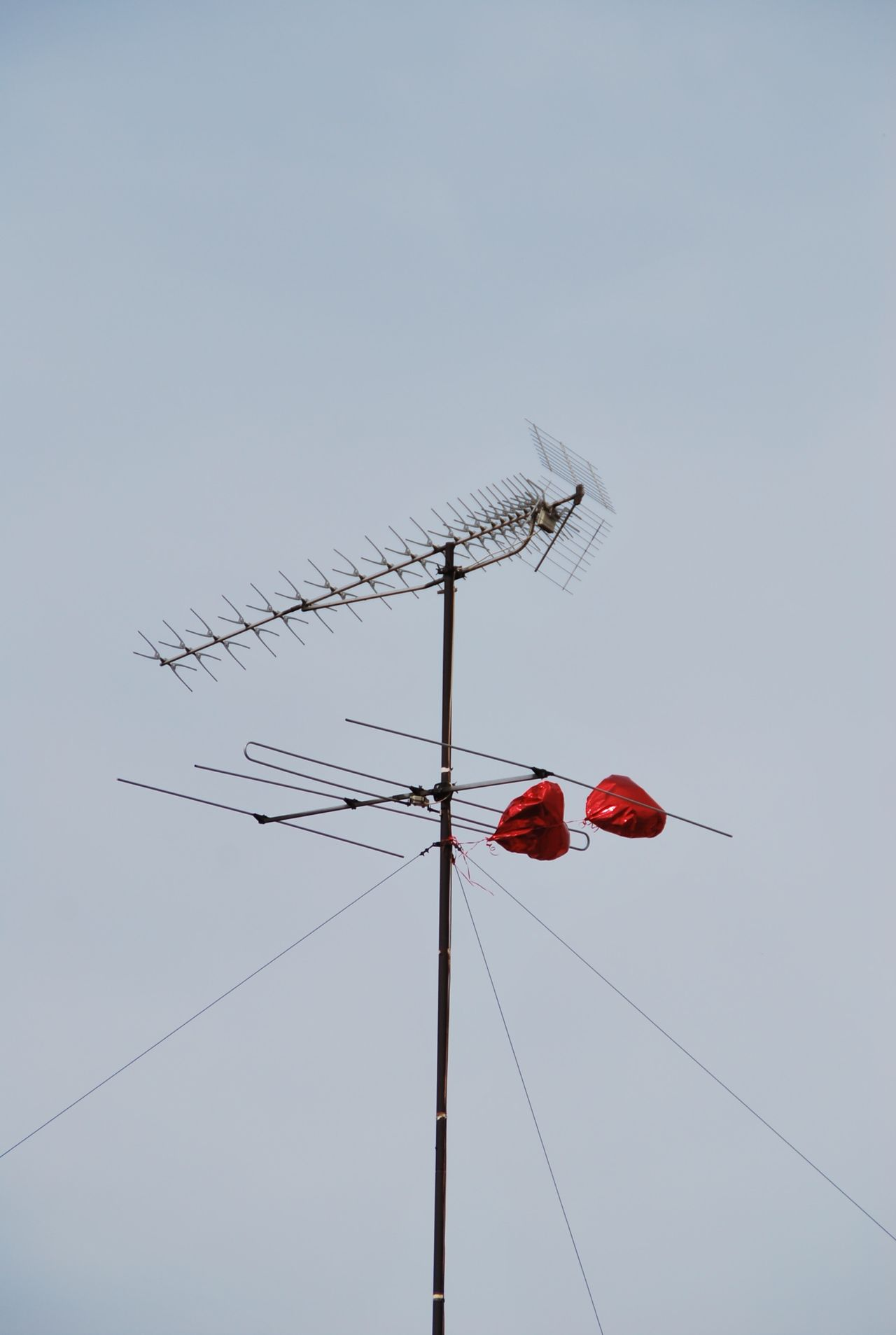 Beautiful stock photos of heart, Antenna - Aerial, Attached, Balloon, Day