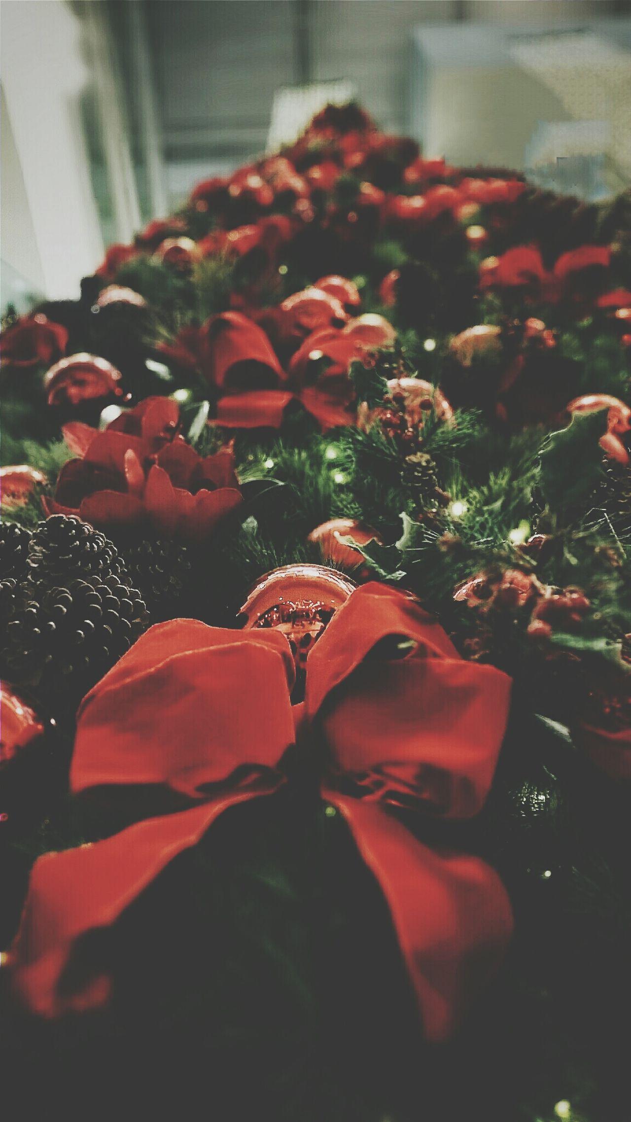 Beautiful stock photos of christmas tree, Brazil, Celebration, Christmas, Christmas Decoration