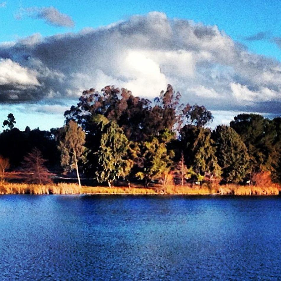 Water, Earth & Sky