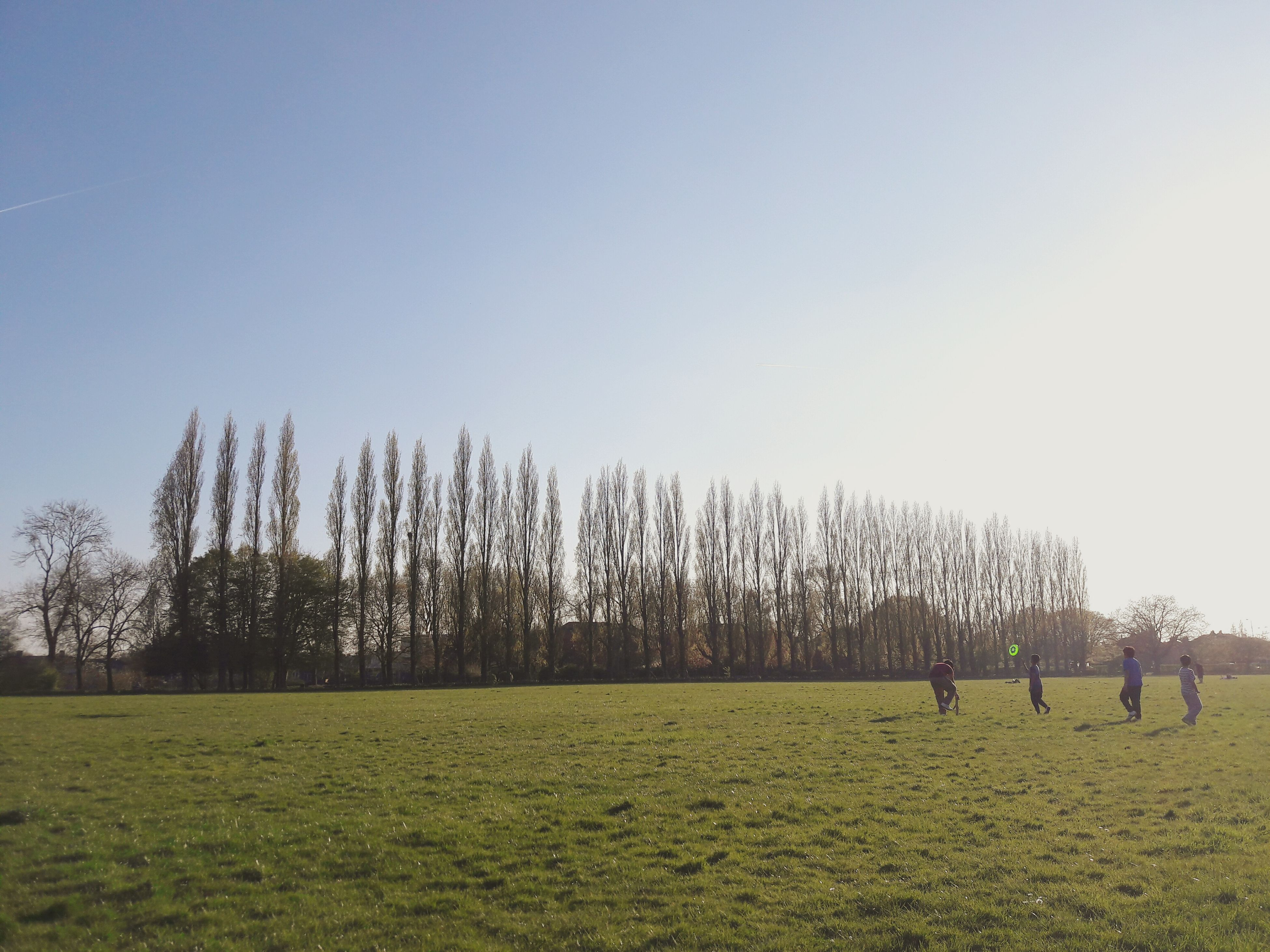 grass, tree, field, nature, clear sky, real people, growth, green color, tranquility, tranquil scene, landscape, leisure activity, scenics, day, outdoors, beauty in nature, lifestyles, togetherness, men, playing, sky, people