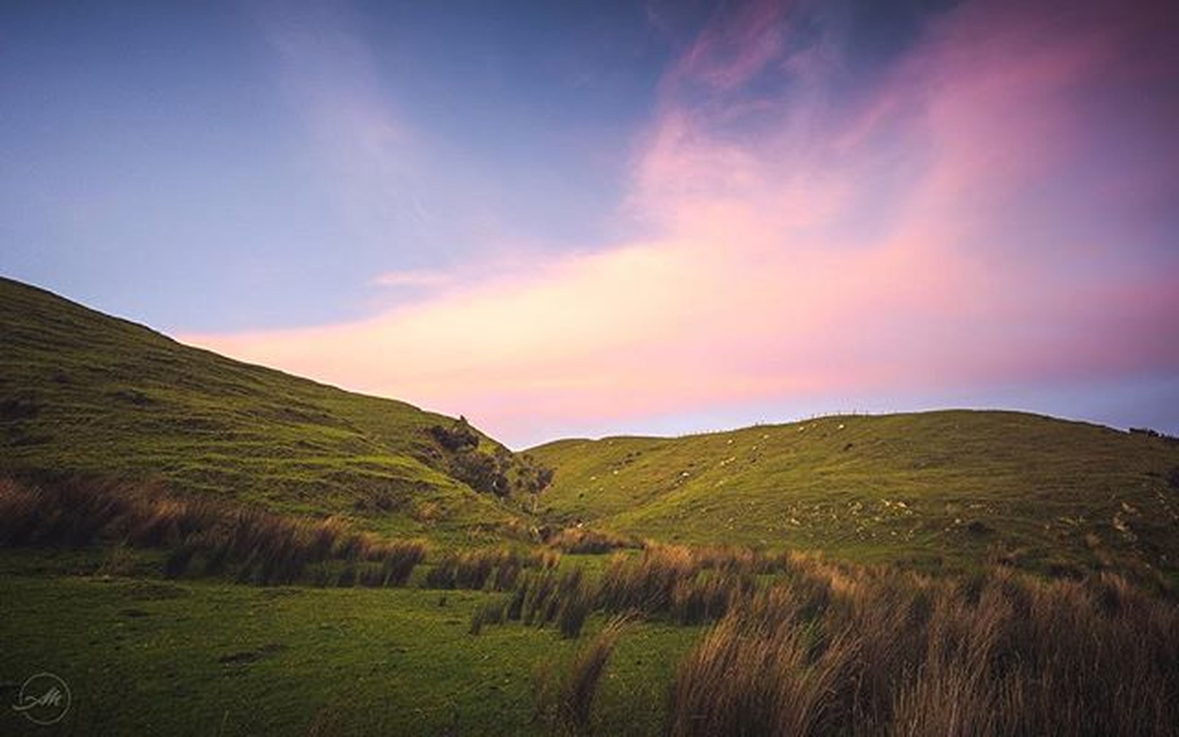 I couldn't get over the colours of this sunset. We'd pulled up to freedom camp beside the Porirua Harbour for the night and the sky begun to light up. Such gorgeous hues of pink, matched with the deep purpley blues of the sky and contrasted by the warm greens of the hillside. I had hoped some of the lil lambs would be closer to the fence, but they do look cute all speckled throughout the hillside. Not long after the sun had set we encountered the windiest night ever!! They don't call it 'Windy Wellington' for nothing. Thought the camper was going to end up on its side at one point haha! ______________________________ @nikonaustralia @samyangru @purenewzealand @wellington_newzealand ______________________________ Stitchedpano Panorama Landscapephotography Landscape NikonLife Nikon Samyang Wideangle Newzealand Nzmustdo Purenewzealand Wellington  Windywellington Sheep Lambs Hillside Sunset Pink Blue Green Instagram
