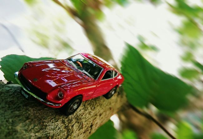 Go!Go! FairladyZ 240Z Minicar Garden Wood In My Garden Nature
