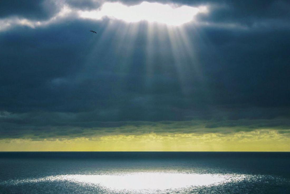 Shaft of Light Series Cloudscape Dramatic Sky Atmospheric Mood New Beginning Hope Faith Water Sunlight Sunbeam Uk Spotlight Shimmer Shaft Of Light Shaft Sea Ray Of Light Light England Dark Clouds Clouds Breaking Through  Beam Of Light Shaft Of Light Series Bird Flying See The Light