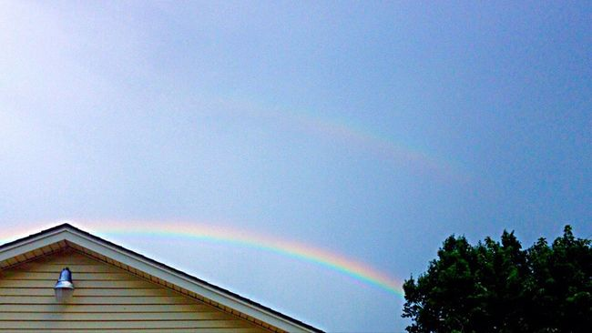 Double Rainbows Rainbow Double Rainbow Tree Low Angle View Multi Colored Blue Beauty In Nature Tranquility Sky Tranquil Scene Scenics Day Nature High Section Natural Phenomenon Treetop Long No People The Way Forward Remote Cloud - Sky Tulsa, Oklahoma