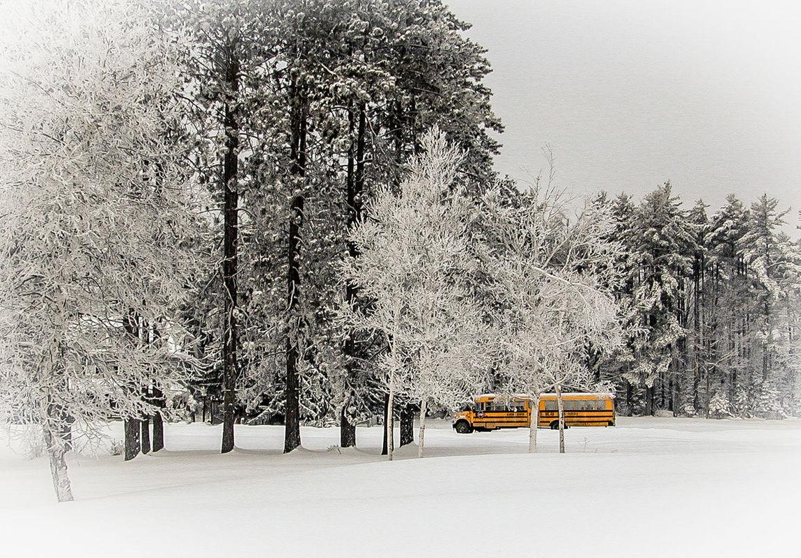 The snow school bus Maine School Bus In Snow Skohegan Maine Rural School Yellow winter storm School Bus