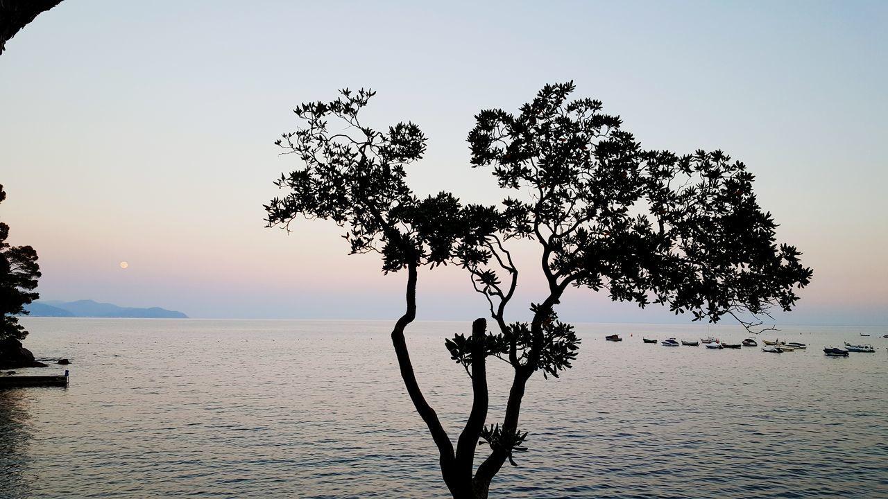 Enjoying The Sun Getting A Tan Relaxing Sea Rapallo San Michele Di Pagana Samsung Galaxy S6