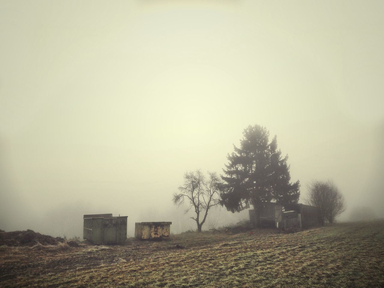 Tree Fog Nature Tranquility No People Tranquil Scene Outdoors Day Sky Foggy Morning Container Barrack Lost Places