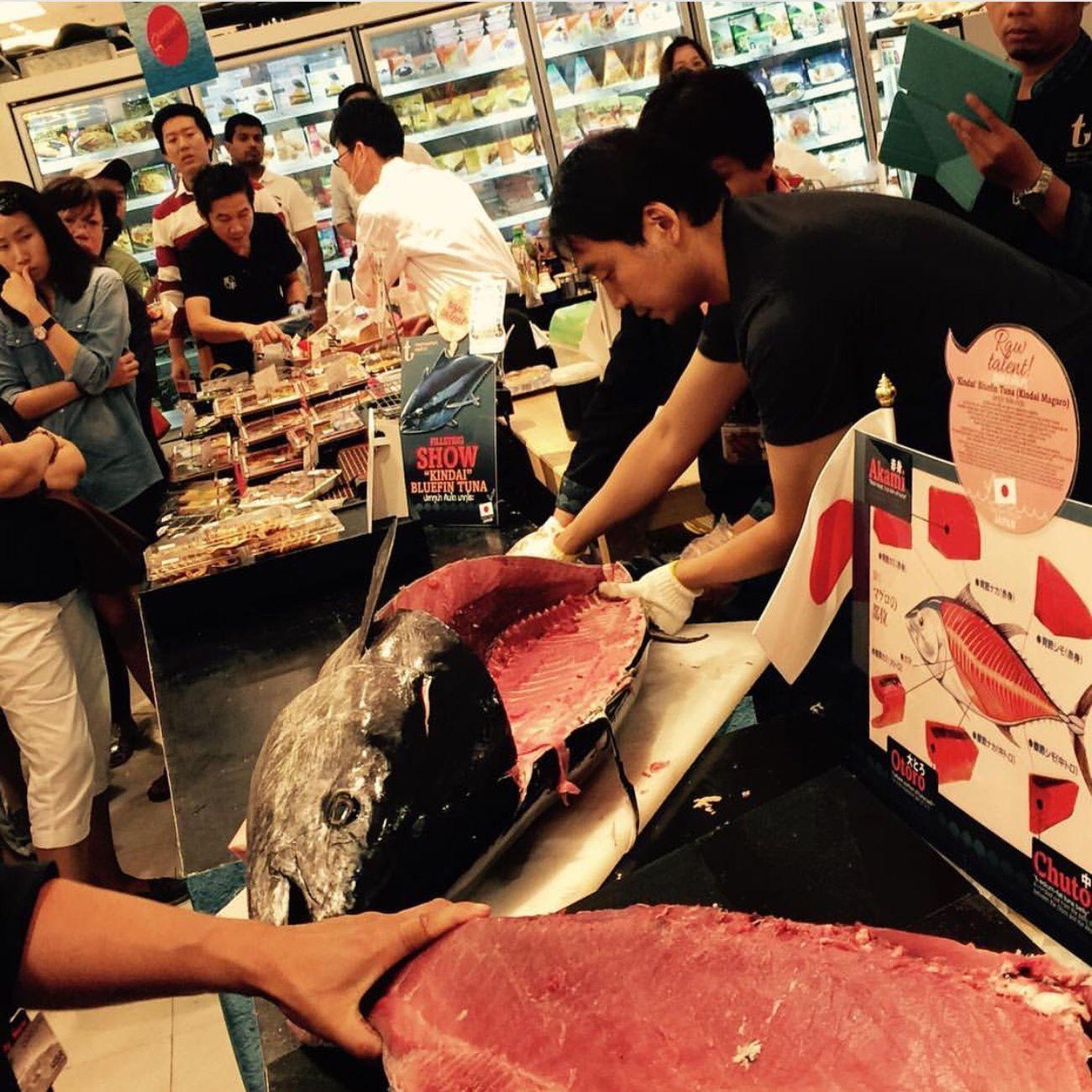 SiamParagon Bangkok Bangkok Thailand. Fish Food Travel Fresh Sashimilovers