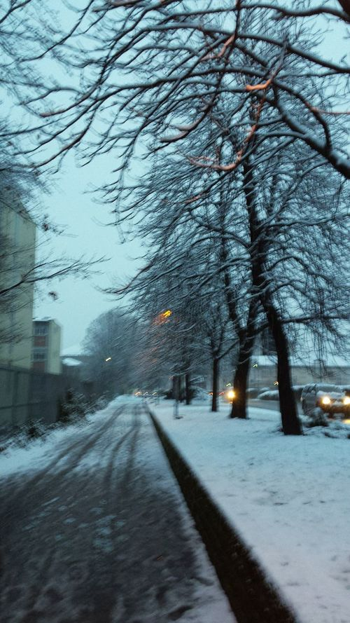 Winter Wintertime Cold Cold Days Snow Snowing Snowy Snowy Street Snow At Dusk Walking Walk In The Snow