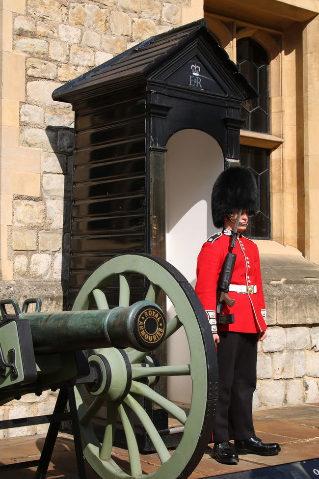 British Guard Cannon Honor No Distractions Proud Queen's Guard Royal Guard Soldier Standing At Attention Standing Guard Tower Of London Guard