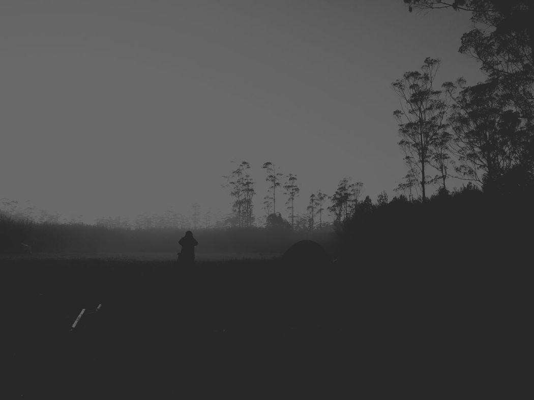 Alone in the dark Silhouette Landscape Nature Dark Field Silhouette Tree Landscape Outline Tranquility Tranquil Scene Clear Sky Field Beauty In Nature Nature Dark Red Scenics Outdoors Solitude Non-urban Scene First Eyeem Photo