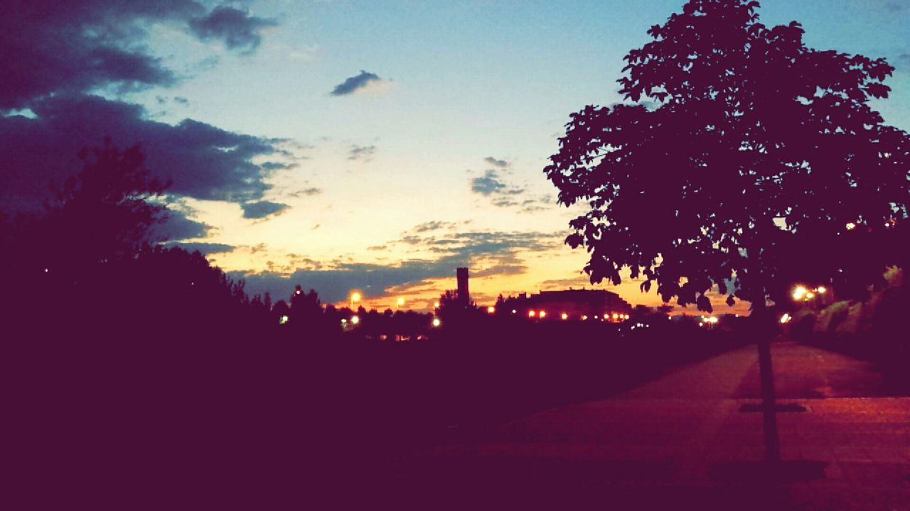 silhouette, sunset, sky, tree, outdoors, nature, no people, illuminated, beauty in nature, scenics, night, architecture, city, close-up