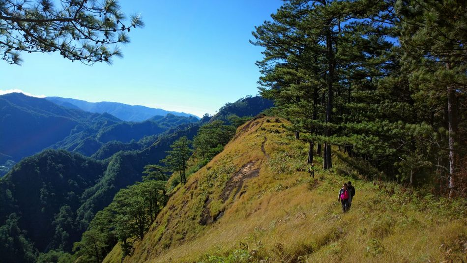 Mt. Tenglawan Nature Tree Landscape Beauty In Nature Mountain Sky Tranquility Mountain Range Outdoors Scenics Day Vacations Adventure One Person People Philippines Travel Destinations Vacations Beauty In Nature First Eyeem Photo