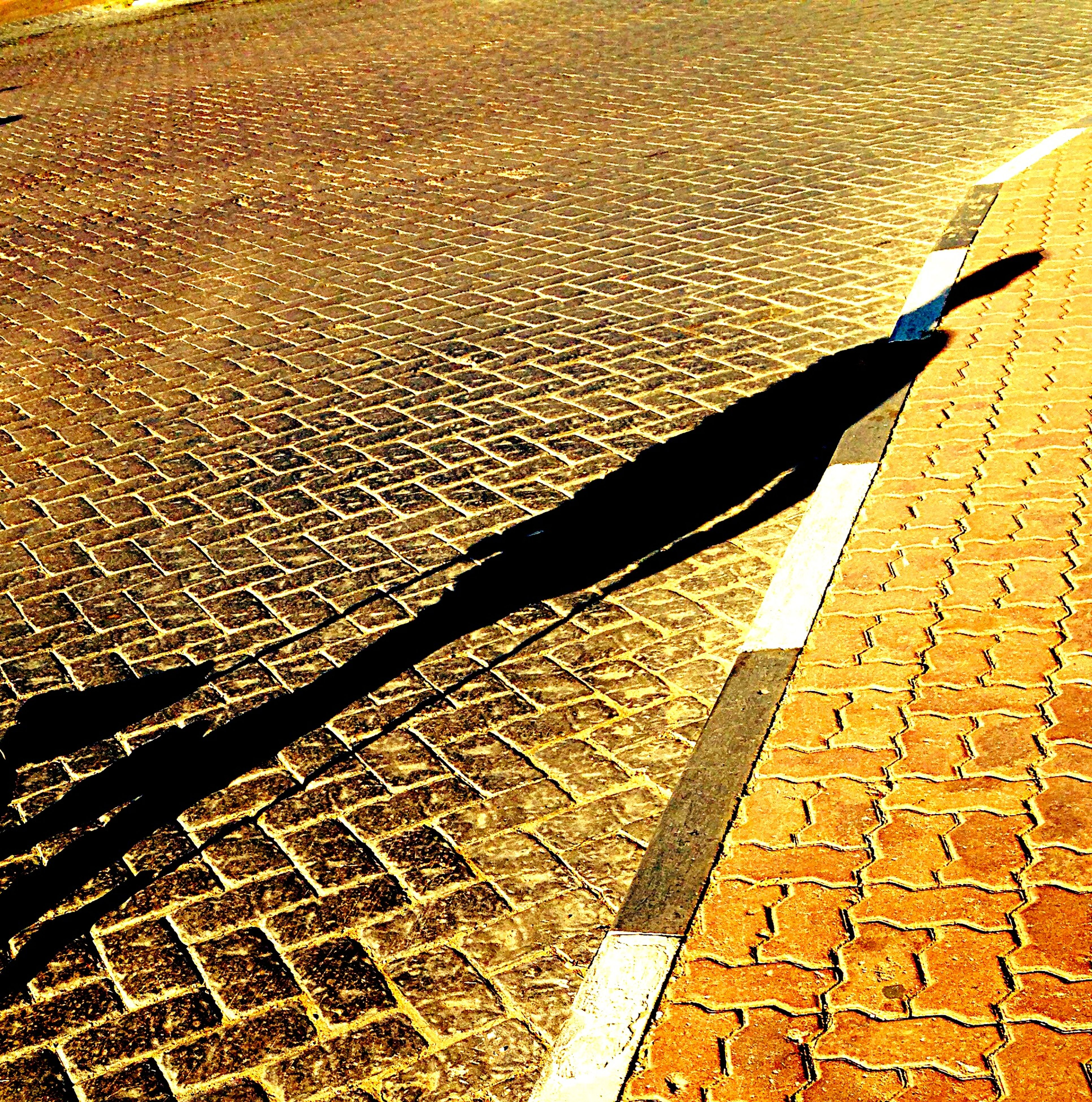shadow, high angle view, sunlight, street, the way forward, outdoors, road, day, no people, sand, cobblestone, paving stone, transportation, asphalt, footpath, nature, sidewalk, road marking, sunny, focus on shadow