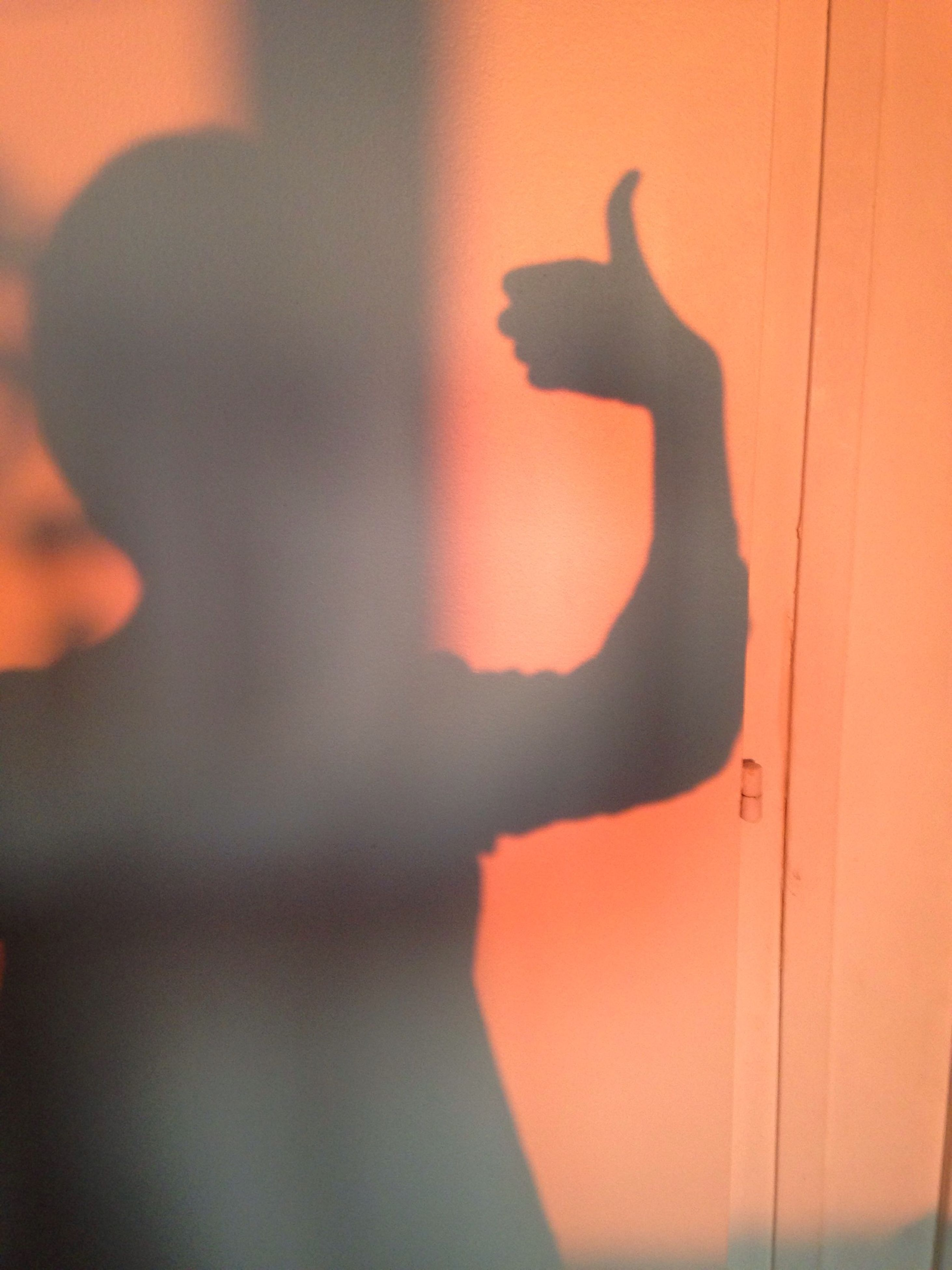 silhouette, orange color, shadow, human representation, focus on shadow, sunset, wall - building feature, indoors, sunlight, animal representation, art and craft, art, side view, creativity, close-up