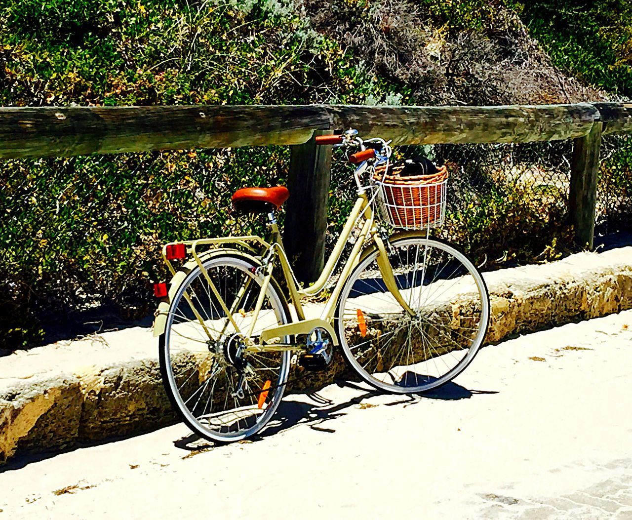 Beach Cruiser Bike Riding Bike Life Cycling Sports Outdoor Recreation Beach Lifestyle Beach Life Vegetation Dune Weeds Green Dune Plants Beach Bike Hipster Transportation Bicyle Beach Cruiser Bike Bike Isolated Abandoned Bicycles