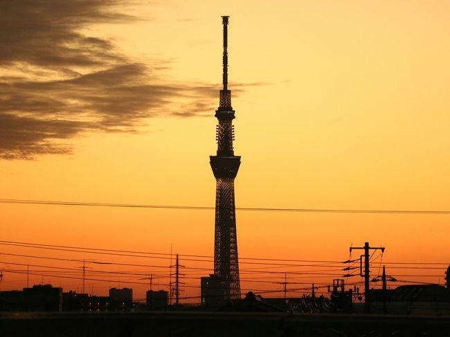 Sunset Silhouette Tower Evening Glow Sunsets Tokyo Japan Tokyoskytree Skytree Landscape