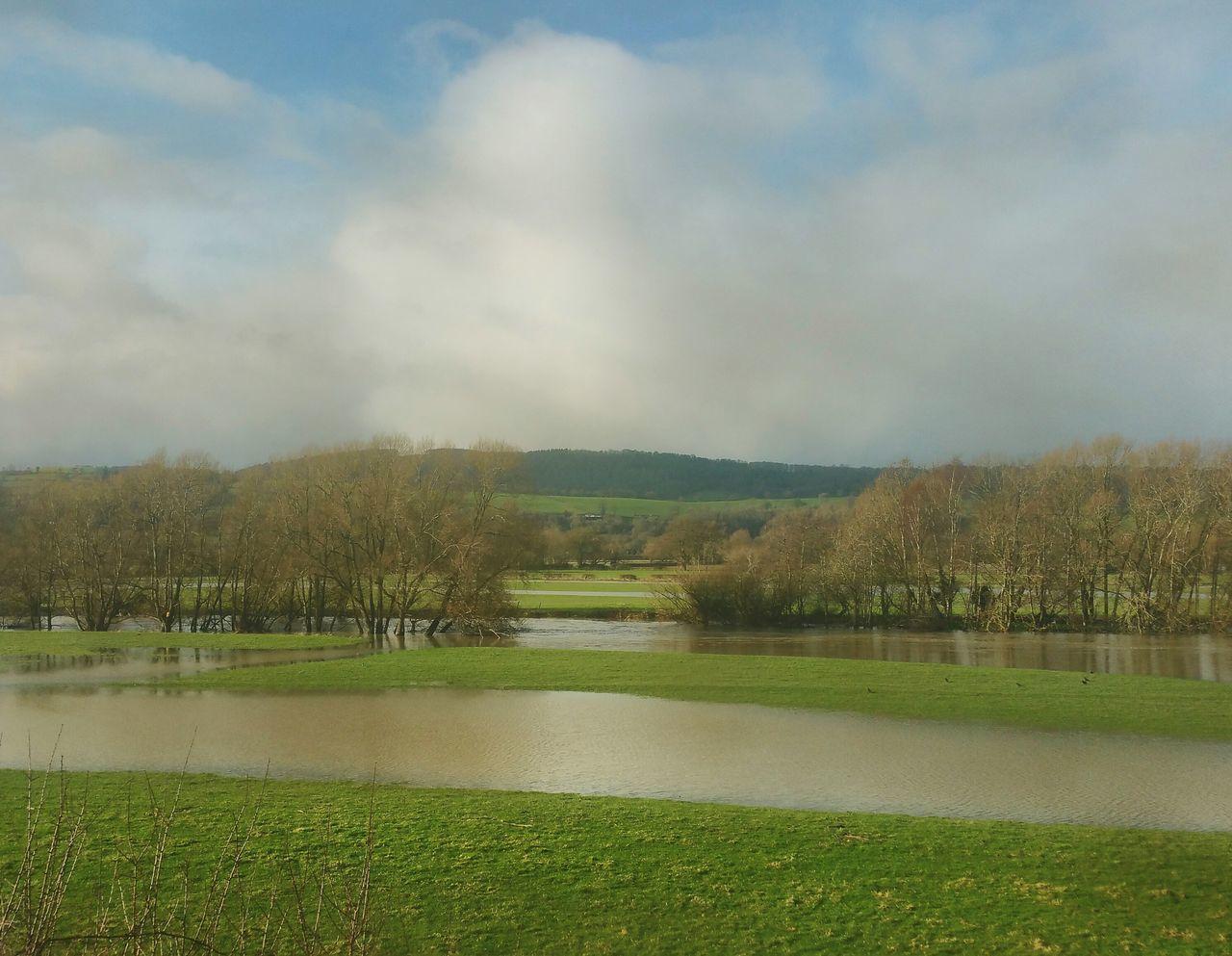 Our Valley looked more like a lake recently. .. Flood Flooding Hafren Severn River Wales Powys река Разлив деревья пойма Meadow Fields