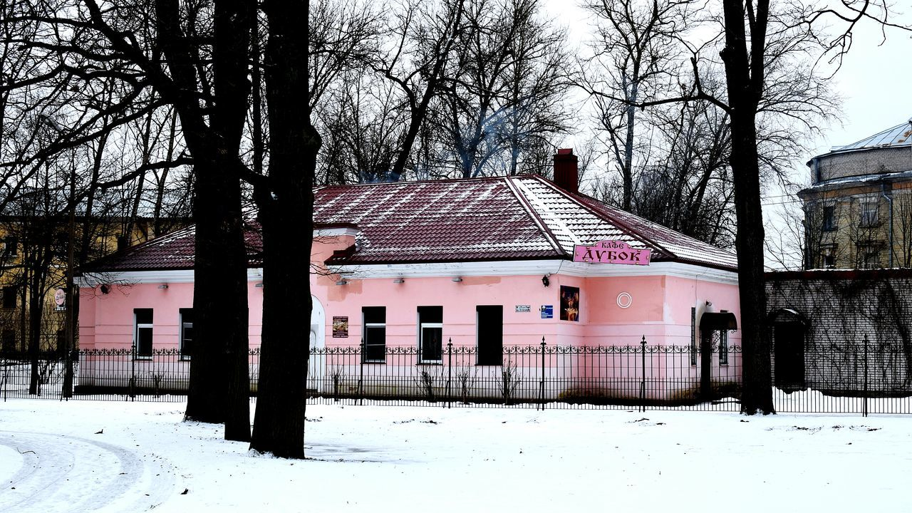 Building Exterior Built Structure Architecture Tree House Day Outdoors No People Snow Millennial Pink