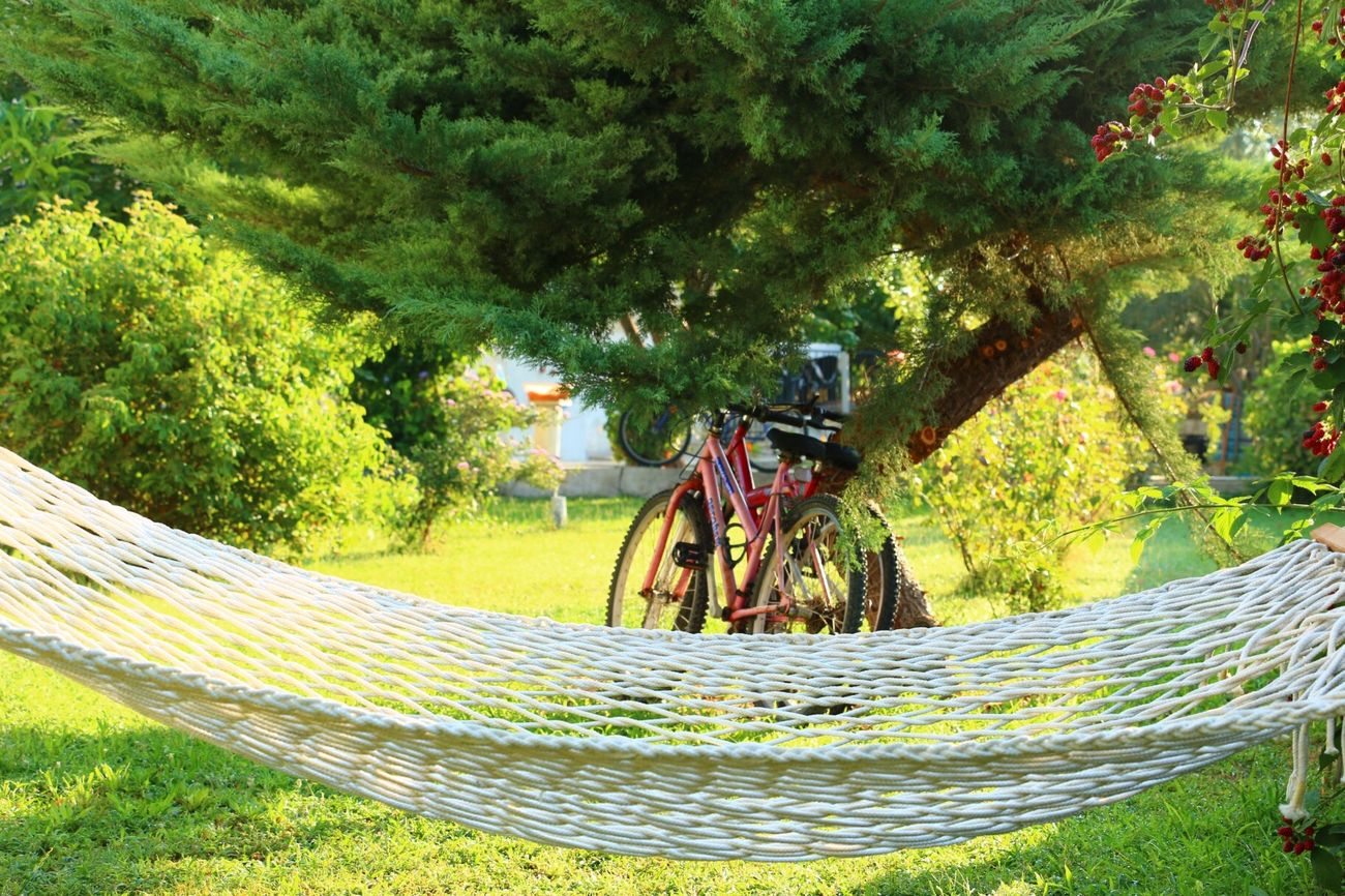 Bicycle Hamak Bisiklet Hammock Dayofthephoto Eye Em Best Shots Relaxing Bike Popular Photos Check This Out