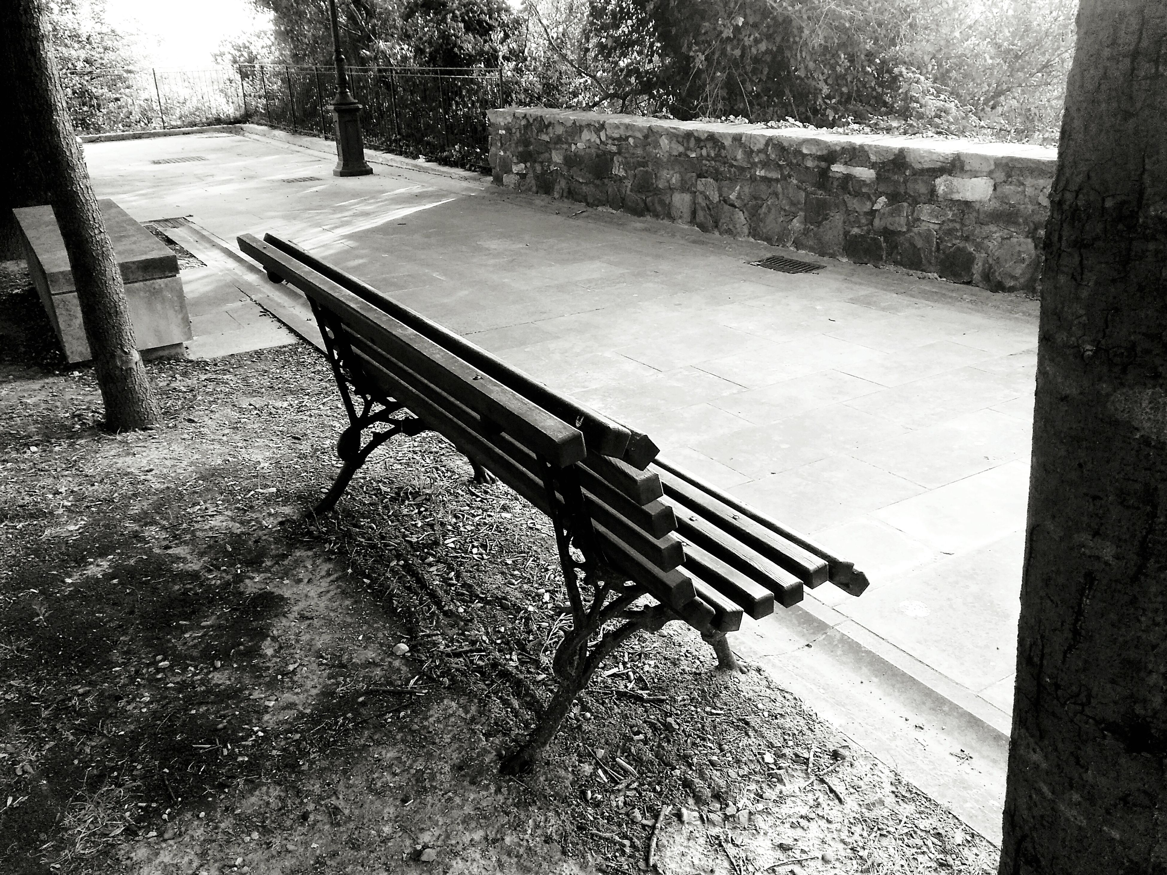 tree, shadow, sunlight, railing, bench, high angle view, built structure, park - man made space, steps, day, wood - material, footpath, outdoors, empty, park bench, absence, no people, metal, sidewalk, architecture