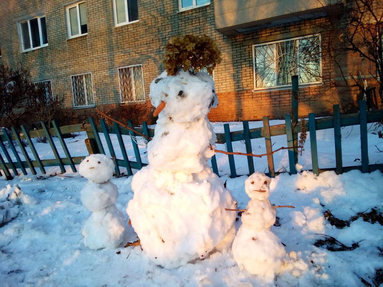 Beautiful stock photos of schneemann, winter, snow, cold temperature, animal themes