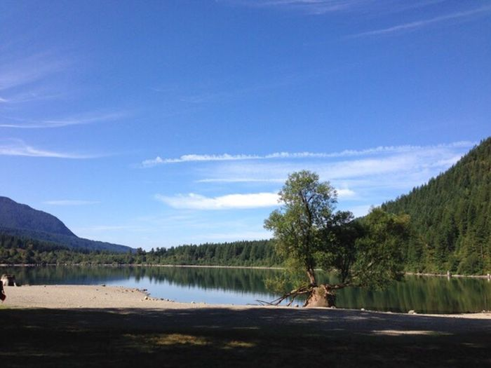 Tree Sky Beauty In Nature Lake Water Scenics Mountain Day Outdoors Blue Sommergefühle