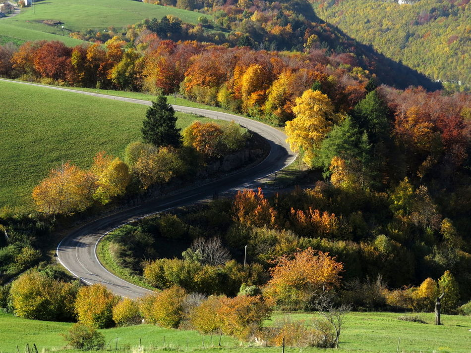 Autumn Colors Beautyinnature  Bending Roads Countryside Landscape_photography Non-urban Scene Relaxing Moments View From Above Winding Road Landscapes With WhiteWall