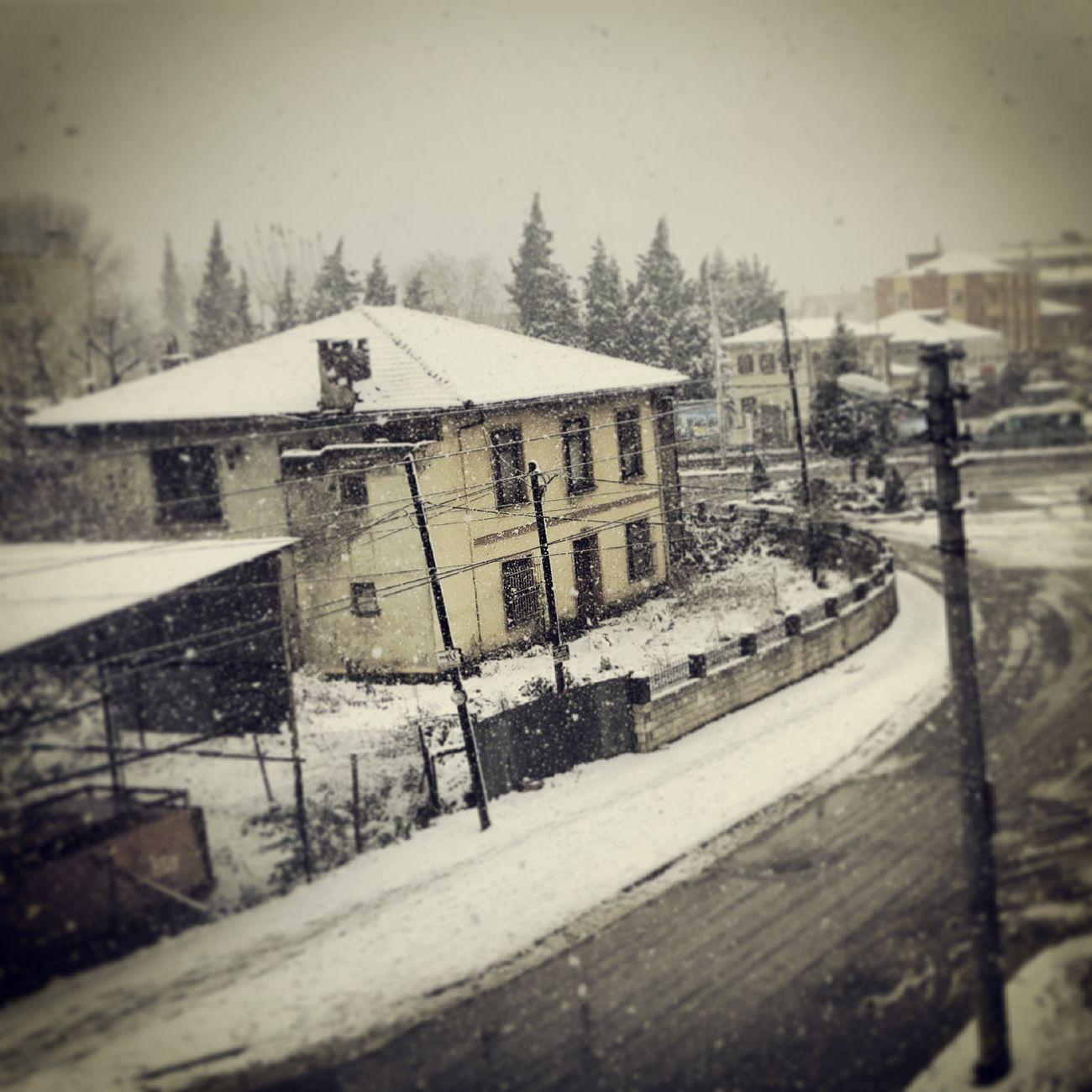 yurttan manzara :)