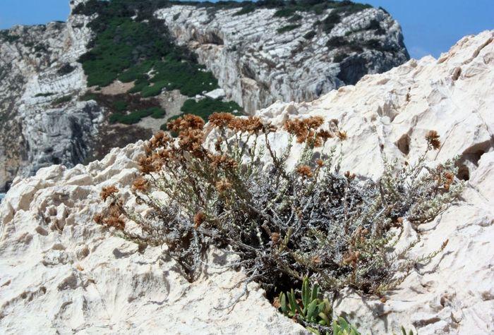 Rock Formation Season  Tranquil Scene Rock Nature Myland