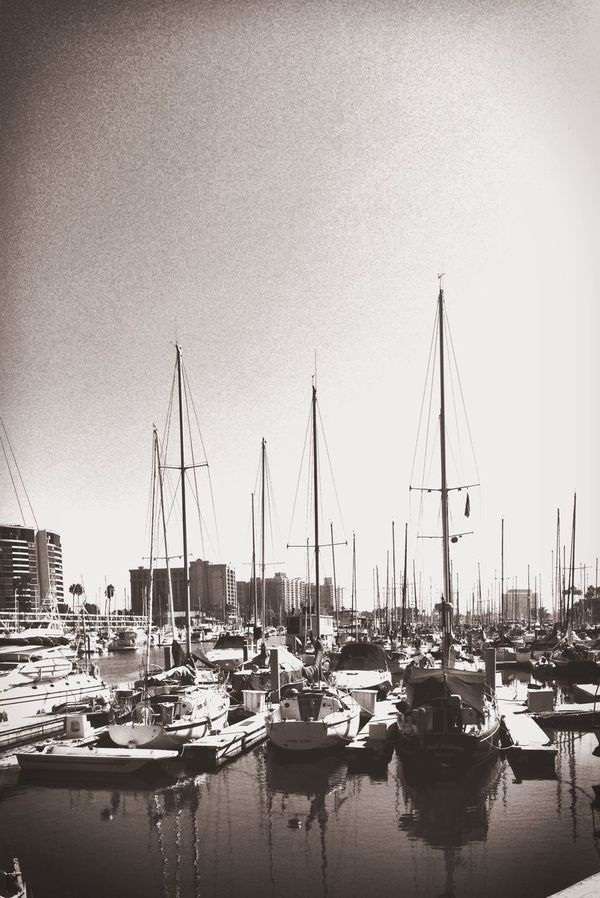 eautiful day for a Monochrome Blackandwhite picture, taken by the Dock at Marina Del Rey in California near Los Angeles, California