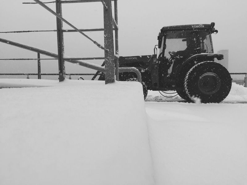 Today storm was serious had to call in the big guns mr.plow Walking Around Taking Photos