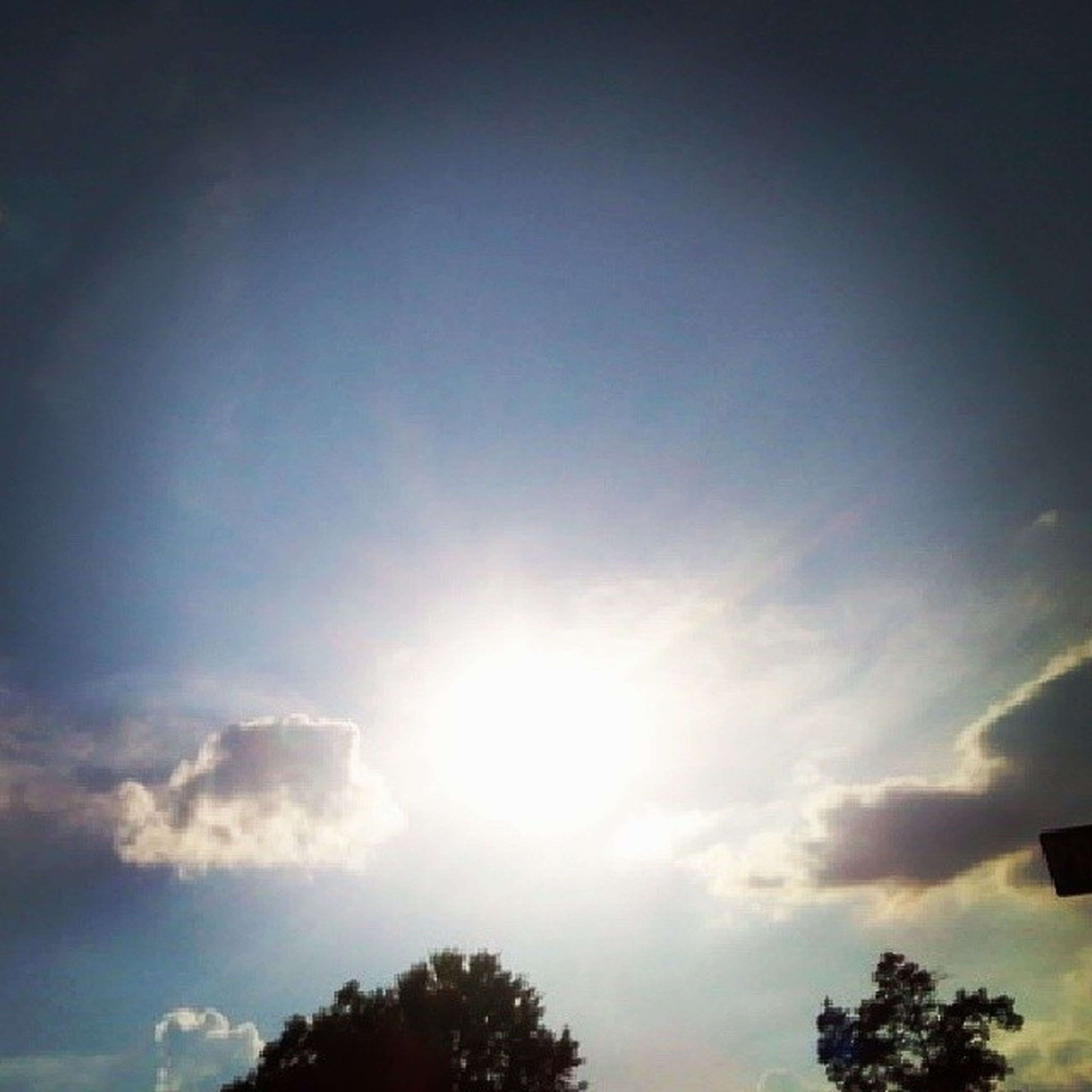 low angle view, tree, sky, sun, silhouette, sunbeam, sunlight, beauty in nature, cloud - sky, nature, high section, tranquility, scenics, cloud, outdoors, no people, blue, tranquil scene, treetop, lens flare