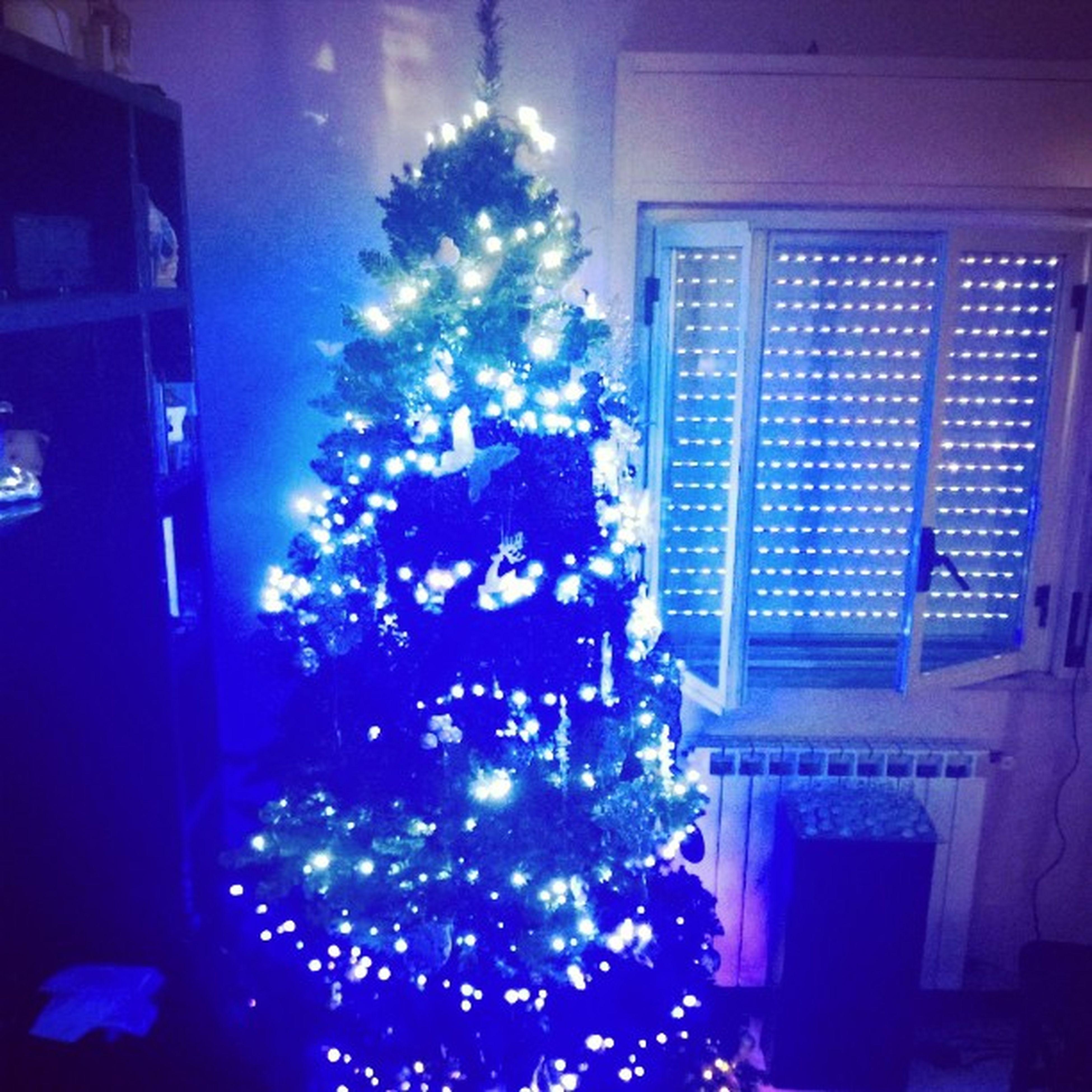 Natale  Menododici Felicità Lalalalalalaaaa Troppocontenta Atmosferanatalizia Luciblu Alberello Germaniarriviamo 😍😍