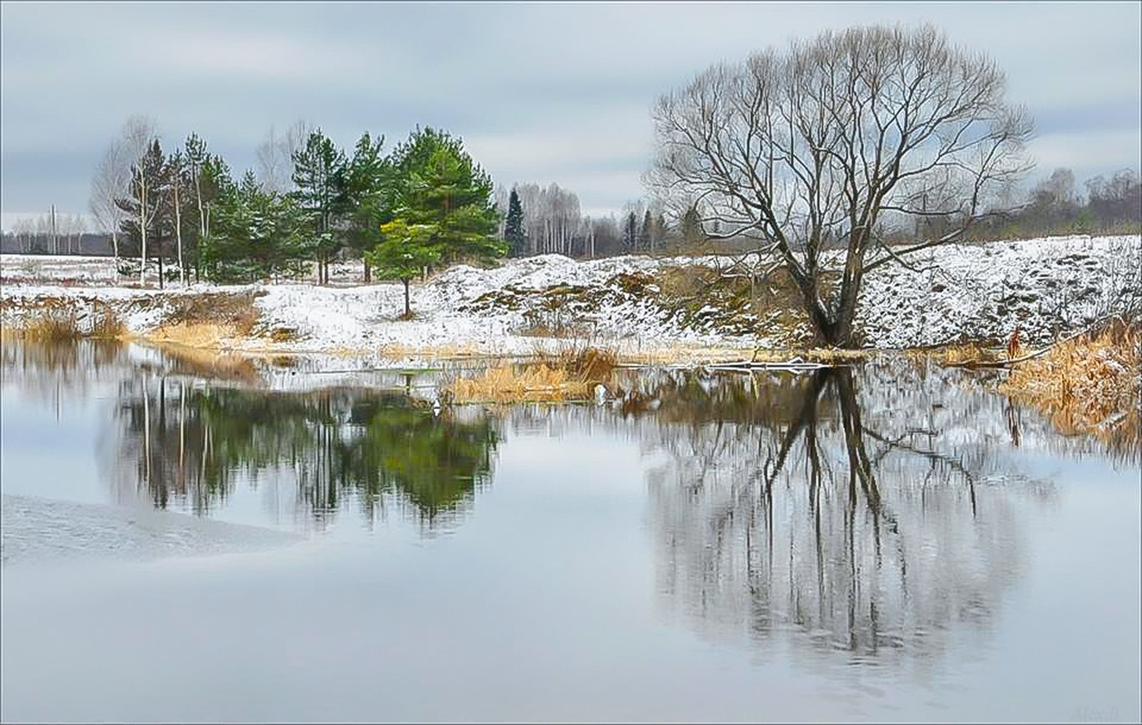 water, lake, tree, reflection, tranquil scene, tranquility, bare tree, sky, scenics, beauty in nature, waterfront, nature, winter, cold temperature, snow, season, standing water, branch, cloud - sky, weather