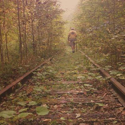 Walking the old rails. #hike #walk #tracks #railroad #iris #camera+ #mobilephotography #igersphilly #iphoneonly #iphonesia #instagood #canvaspop #instamood #instadailyy #webstagram #picoftheday #photooftheday #igaddict #mnolt #igers #instagramhub # Insta_crew Instagood Walk Statigram Camera Instagramhub Tracks Webstagram Railroad 20likes Iphoneonly Igersoftheday Photooftheday Jj_forum Iphonesia Igaddict Iris Canvaspop Picoftheday Iphoneartists Mobilephotography Igersphilly Hike Mnolt Instamood Instadailyy Igers Jj