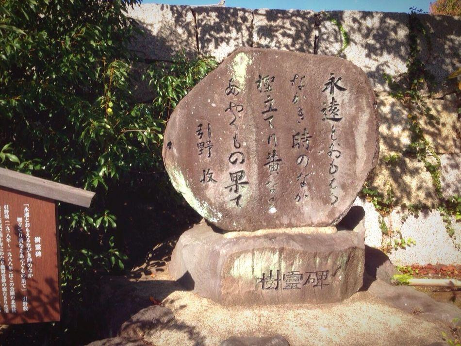 Kyoto Japan Fushimimomoyamajyo Fushimi Haiku Blue Sky Summer 京都 日本 伏見桃山城 伏見 俳句 夏