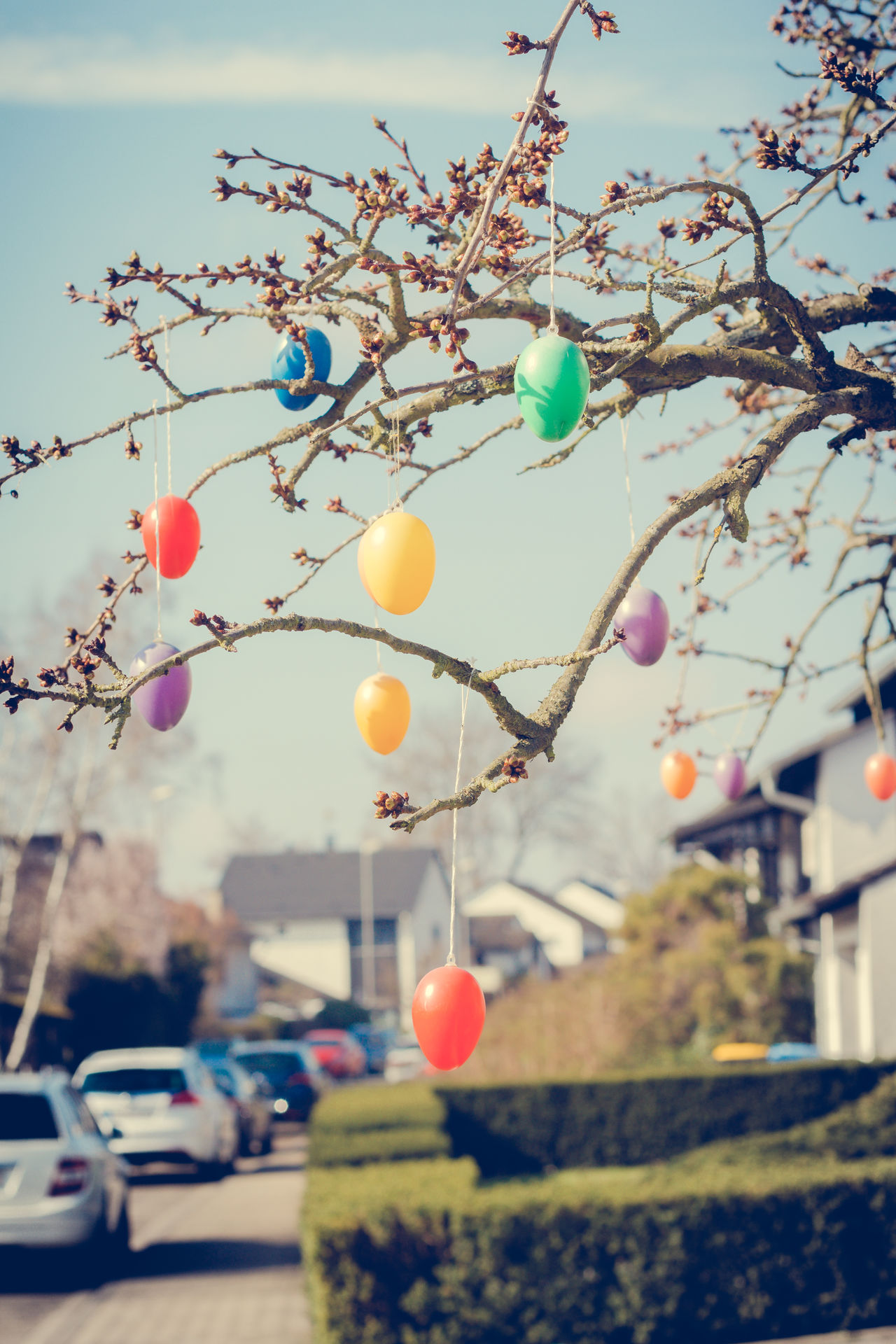 Ostern Balloon Be Happy Celebration Christmas Ornament Close-up Colors Day Easter Eggs Feast Hanging I Love Easter No People Ostern Outdoors Sky Springtime Tree Tree
