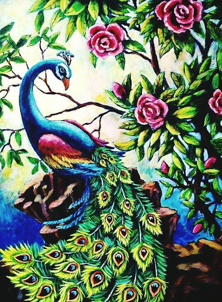 multi colored, no people, green color, day, close-up, nature, outdoors, beauty in nature, animal themes, bird