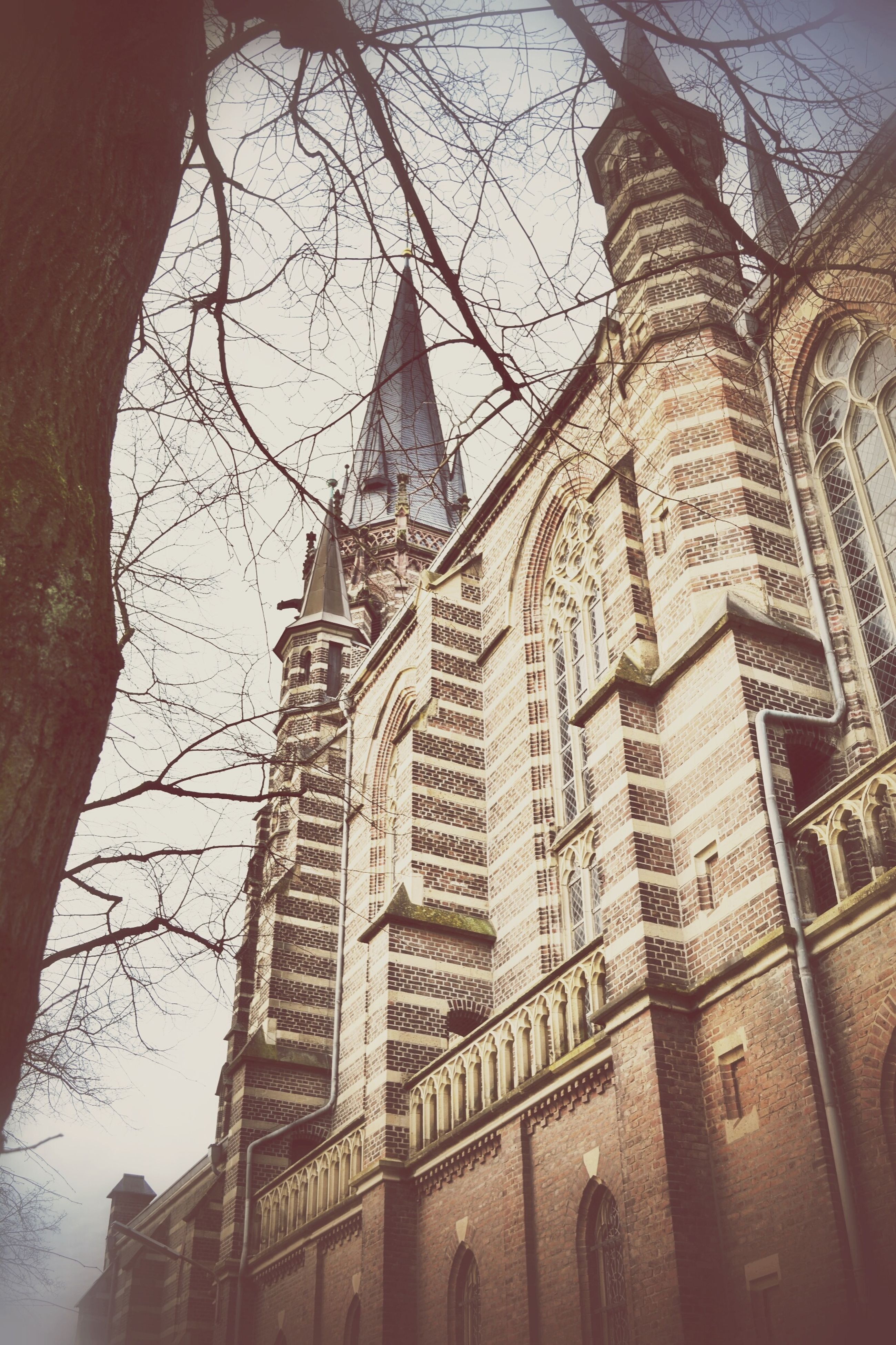 architecture, building exterior, built structure, low angle view, place of worship, religion, church, spirituality, bare tree, tower, city, tree, sky, tall - high, branch, travel destinations, famous place, building