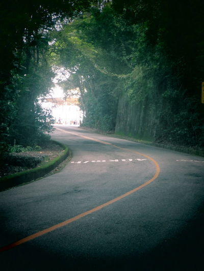 Asphalt Country Road Day Diminishing Perspective Dividing Line Double Yellow Line Empty Empty Road Long Nature No People Outdoors Road Road Marking Road To Nowhere Sky Street The Way Forward Tijuca's Forest Transportation Tree Vanishing Point Vista Chinesa