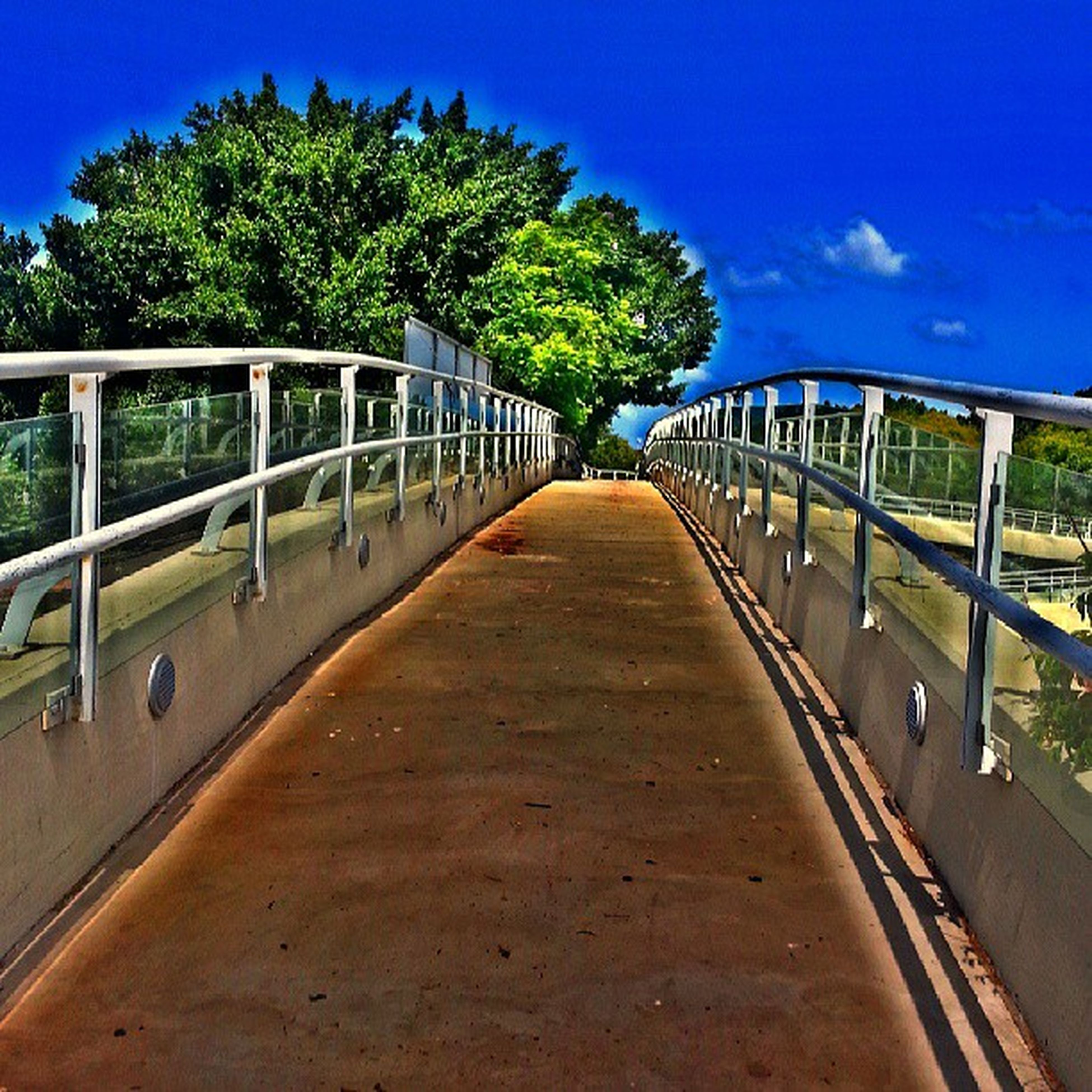 the way forward, tree, diminishing perspective, railing, vanishing point, connection, long, sky, blue, transportation, built structure, bridge - man made structure, tranquility, footbridge, shadow, road, tranquil scene, walkway, empty, nature