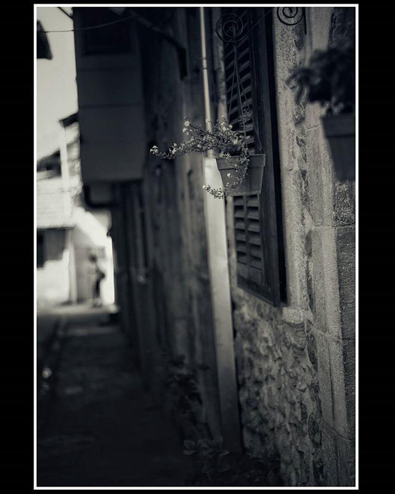 bazen renge gerek olmaz... Monochromatic MonochromePhotography Monochrome Blackandwhitephoto Bwphotography Siyahbeyazfoto Photohobycanokkali Photographercanokkali Canon Canon70d Canonphotography Antakya Hatay  Turkey Photooftheday