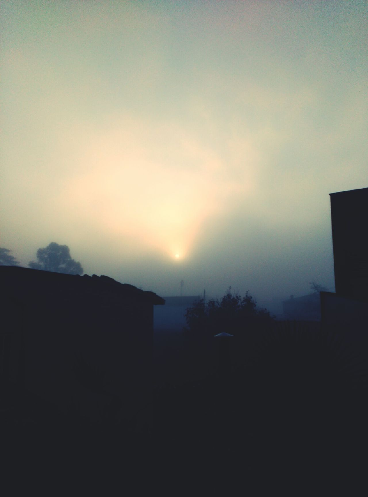 Un dia fred 09:00h am Silhouette Sunset Nature Sky Sunlight Cold Winter ❄⛄ Wintertime Frio ⛄❄ Freddo Polare!😆 Llums Lightofthesun