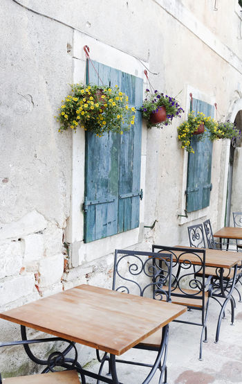 Architecture Bar Blue Built Structure Chairs Coffee Day Drink Dubrovnik, Croatia Eat Empty Exterior Flower Lunch No People Outdoors Pots Of Flowers Shutters Street Terrace Summer Table Tables Town Urban Windows