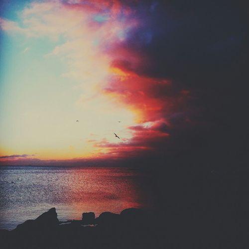 Bostancı Sahili View Skyporn